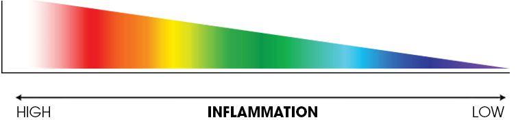 inflamation scale